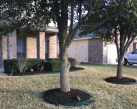 Hutto, TX Residential Lawn Maintenance Example