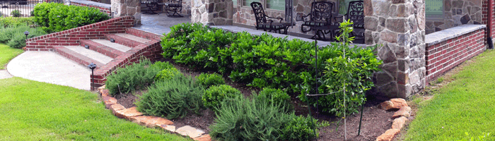 Lawn Care in Central Texas
