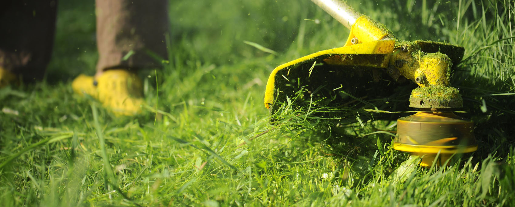 Commercial landscape maintenance in college station round for General garden maintenance