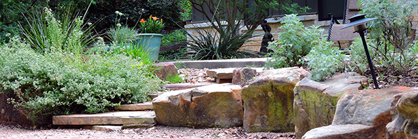 jeff david texas landscape creations