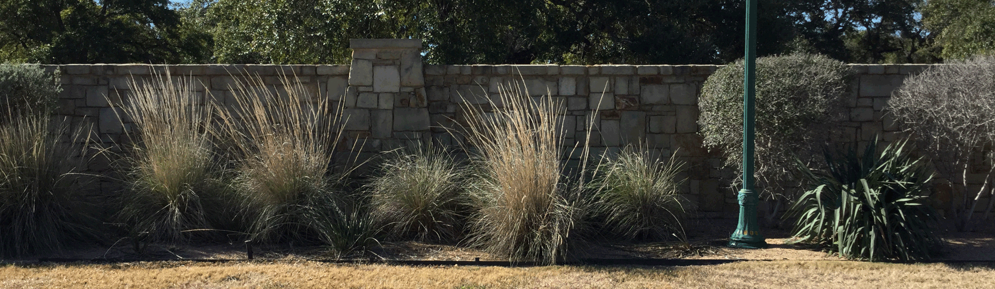 Commercial Lawn Maintenance Example in Georgetown TX