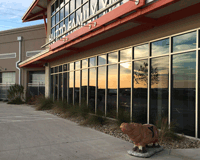 YMCA Hutto Landscaping Example