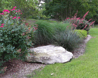 Example of Commercial Landscaping Maintenance in Bryan/College Station, TX
